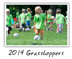 2014 Grasshoppers