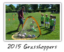 2015 Grasshoppers