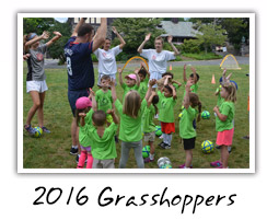 2016 Grasshoppers